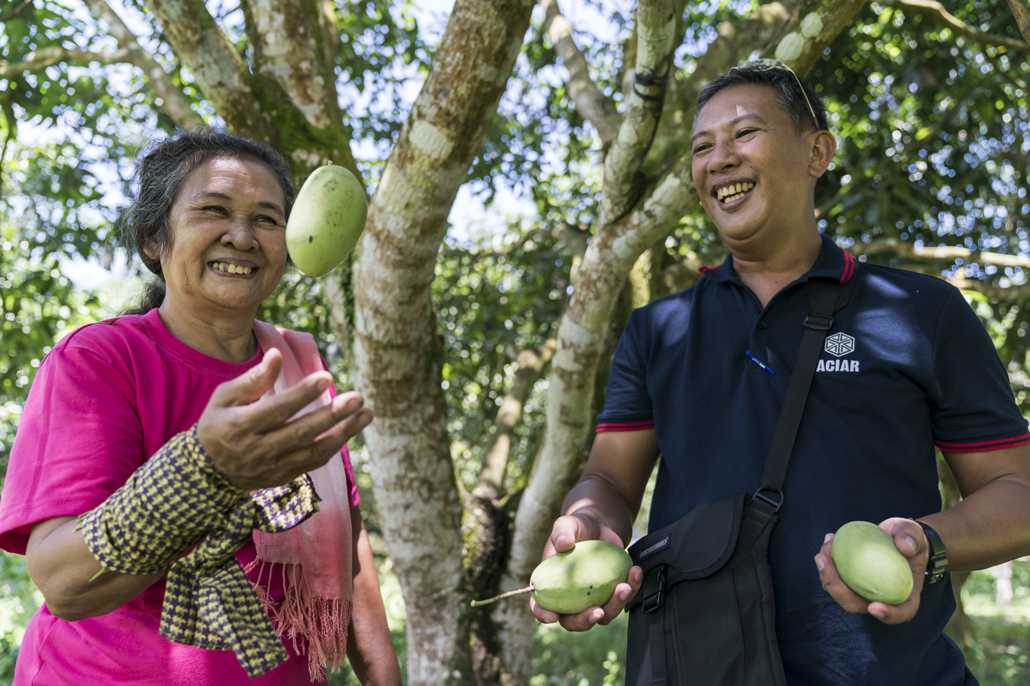 Mango farmers in the Philippines